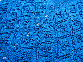 Rose Leaf Lace Vest