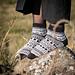 Kavalkad socks pattern