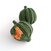 Acorn Squash pattern