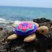 Sea Turtle Amigurumi pattern