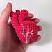 Crocheted Anatomical Human Heart Pattern pattern