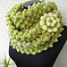 Infinity Green Scarf With Flower pattern