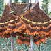Entwife Marching Cloak pattern