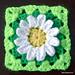Wild daisy flower granny square pattern