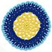 Merry Go Round Dishcloth pattern