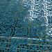 Waterlily shawl pattern