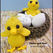 Chicks and Nest pattern