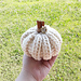 Farmhouse Pumpkins pattern
