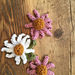 Echinacea Flower pattern