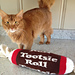 Tootsie Roll Bolster Pillow pattern