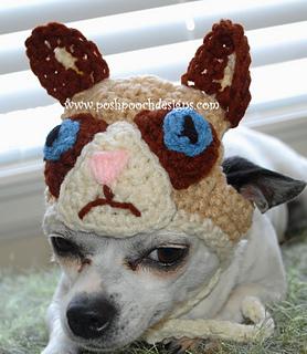 Ravelry Grumpy Cat Dog Beanie