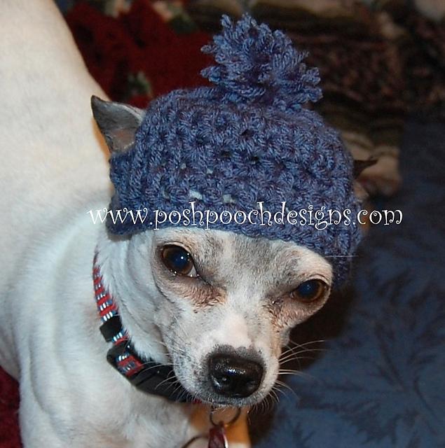 Ravelry Medium Dog Beanie Pattern By