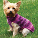 Paw Print Dog Sweater pattern
