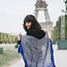 Tour Eiffel Shawl pattern