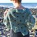 Icarus Crochet Shawl pattern