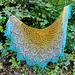 Venus Verticordia Shawl Lace pattern