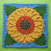 Sunflower Harvest Square pattern