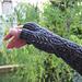 Brilthor - Perlenstulpen pattern