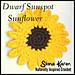Dwarf Sunspot Sunflower pattern