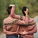 Merryland Sweater pattern