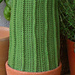 Giant Cactus pattern