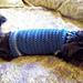 Size Small Dog Sweater pattern