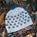 Pawprints Hat pattern