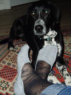 Hidden in my shoe socks