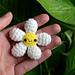 Little Flower pattern