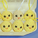 Egg Carton Chicks and Eggs pattern