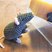 Rat for Chinese New Year 2020 pattern