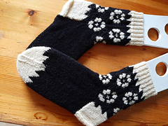 record-socks...  the pair knitted in one day!