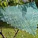 Leaf Evolution Shawl pattern