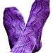 GUSH - Sock Solids June 2011 Mystery Sock pattern