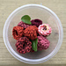 Raspberries_yunique garden pattern