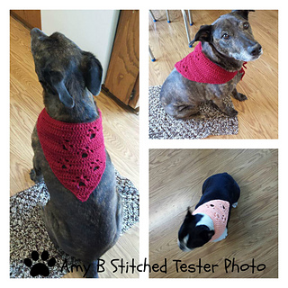 HAE Awareness Pet Scarf Fundraiser - see description