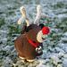 Ronald the Fat Little Reindeer pattern