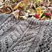 Autumn Lace Panel pattern