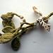 Eternal Mistletoe for the Perpetually Hopeful pattern