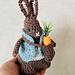 Peter Rabbit Amigurumi pattern