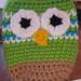 Owl Change Purse pattern