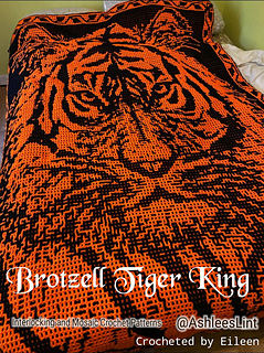 Crocheted by Eileen using interlocking technique