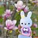 Usako the Wishing Bunny pattern