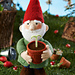 Green Fingers Gnome pattern