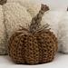 Project : Seed Stitch Pumpkin pattern