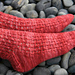 Berry Patch Socks pattern