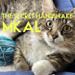 The Secret Handshake MKAL pattern