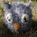 Baby Chick Hat pattern