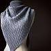 Zilverwear pattern