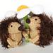 hedgehog Evert pattern